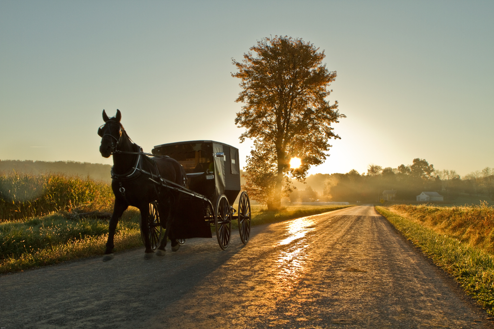 [Q] Which U.S. state has the largest Amish population?
